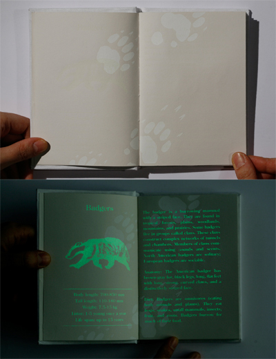 Glow in the Dark Book